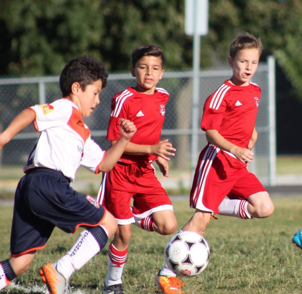 Amateur association claire pointe soccer